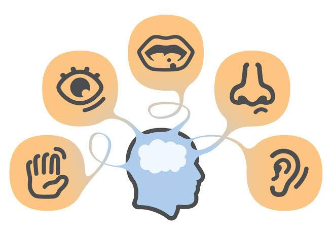 Classroom Activities For Developing Students' Sensory-motor Skills